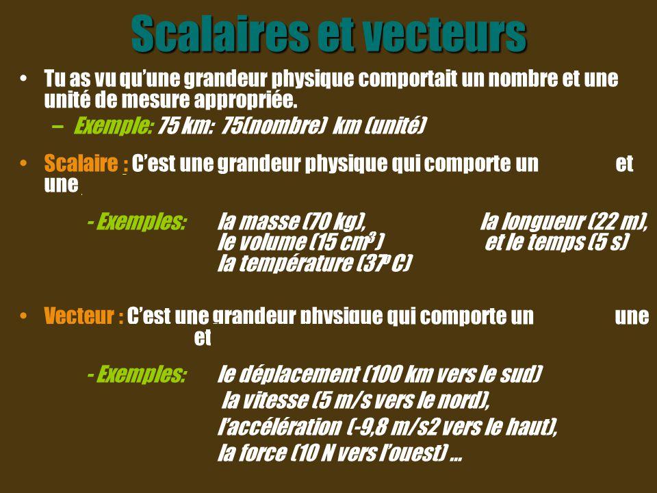 Orientation Pour indiquer qu'une variable représente un vecteur, on place une pointe de flèche au- dessus de cette variable.