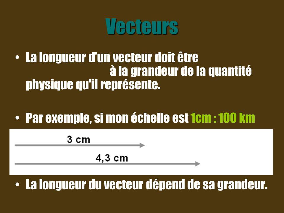 Étapes à suivre pour tracer un vecteur 1ère étape : Choisis une échelle.