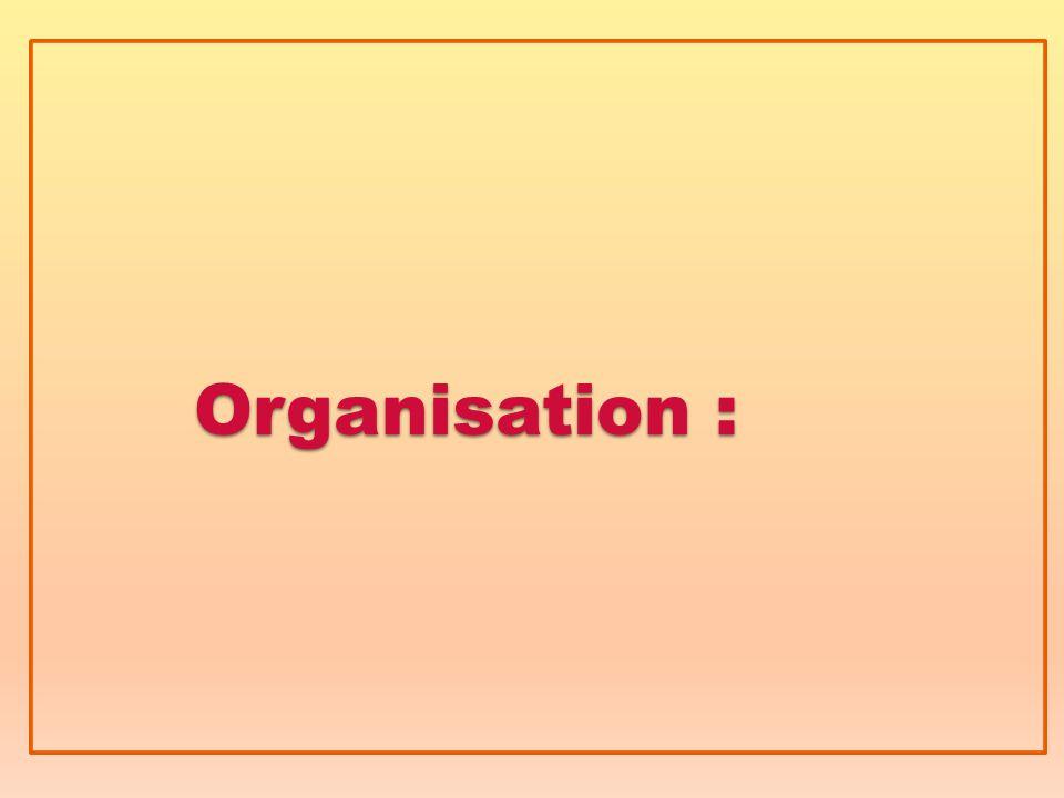 Organisation :
