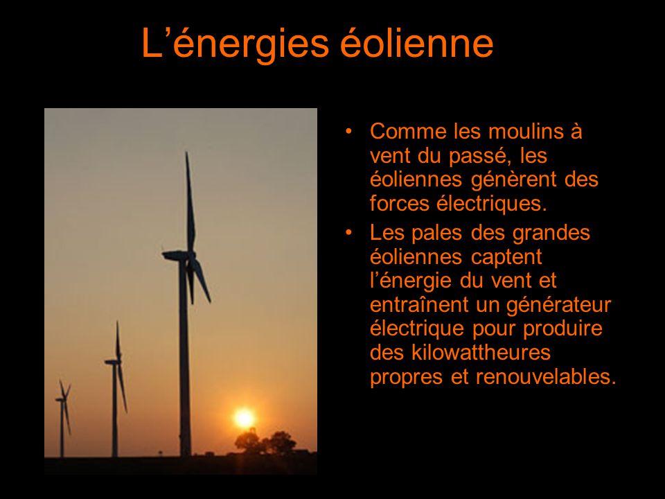 L'énergies éolienne Comme les moulins à vent du passé, les éoliennes génèrent des forces électriques. Les pales des grandes éoliennes captent l'énergi