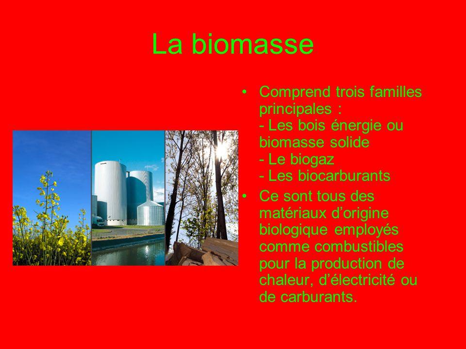 La biomasse Comprend trois familles principales : - Les bois énergie ou biomasse solide - Le biogaz - Les biocarburants Ce sont tous des matériaux d'o
