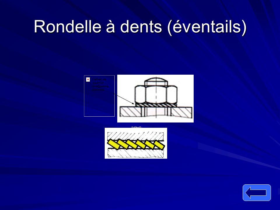 Rondelle à dents (éventails) Détail :