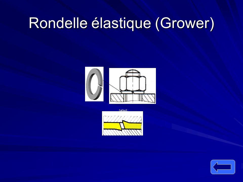 Rondelle élastique (Grower) Détail :