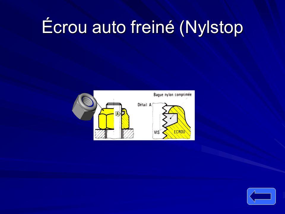 Écrou auto freiné (Nylstop