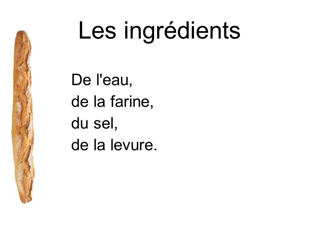 Les ingrédients De l'eau, de la farine, du sel, de la levure.