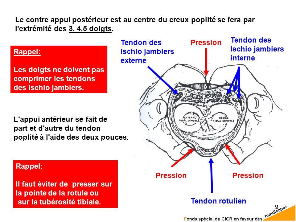 9 L appui antérieur se fait de part et d autre du tendon poplité à l aide des deux pouces.