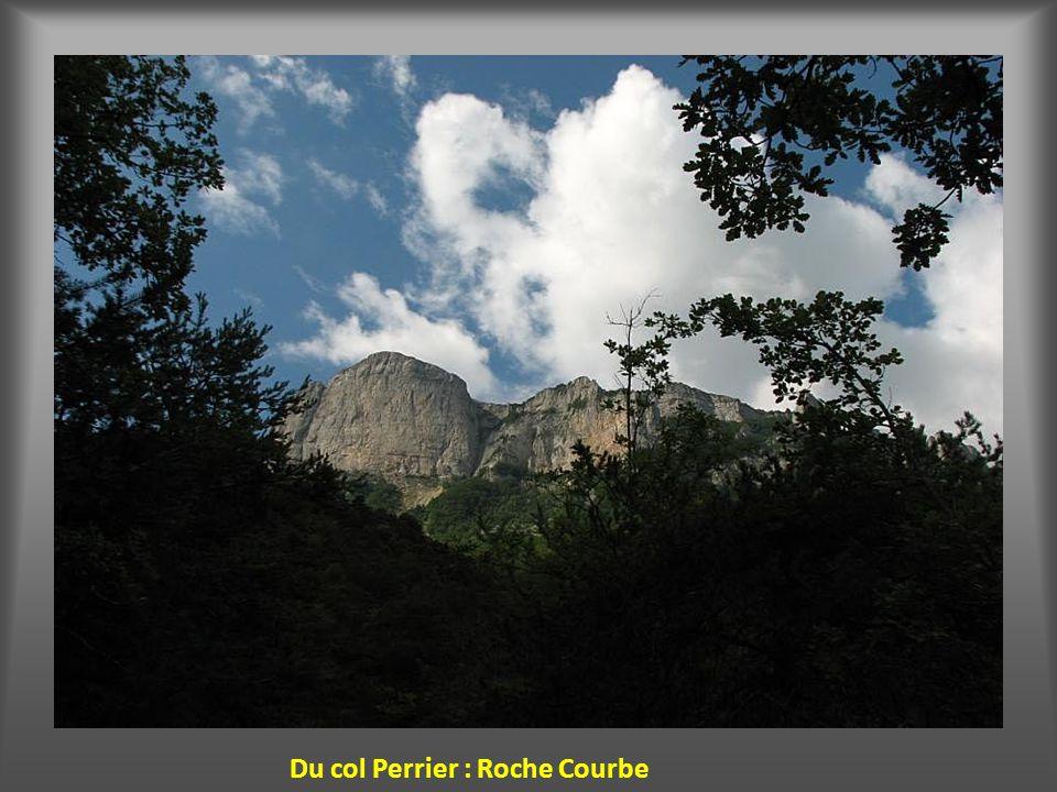Du plan d'Aubre le Mt Ventoux