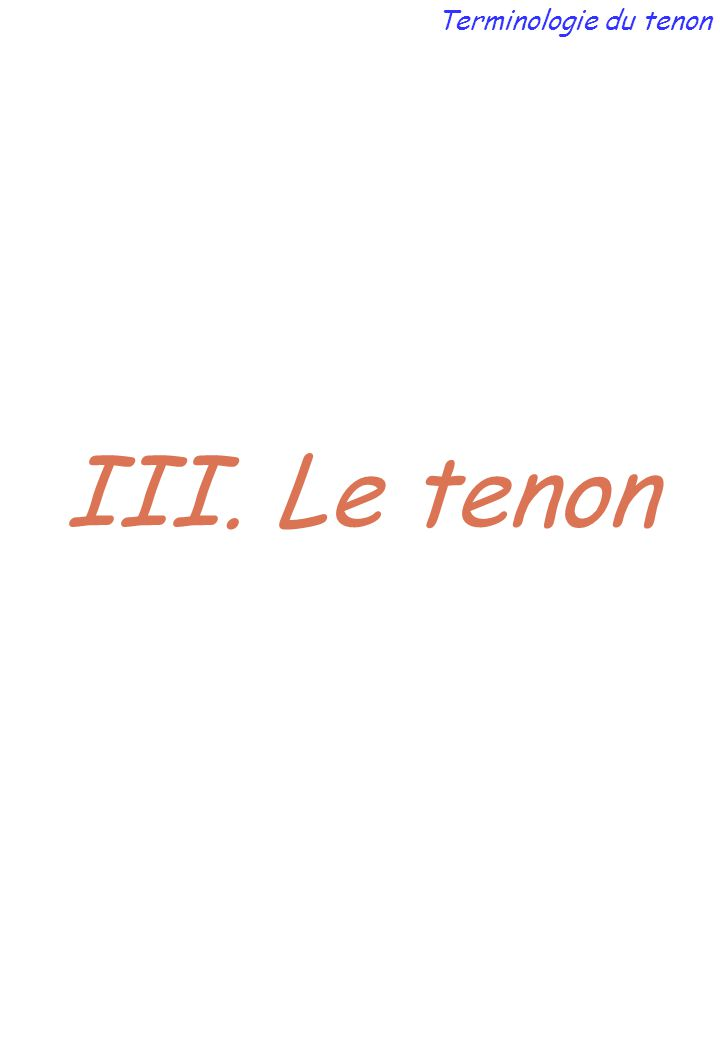 III. Le tenon Terminologie du tenon