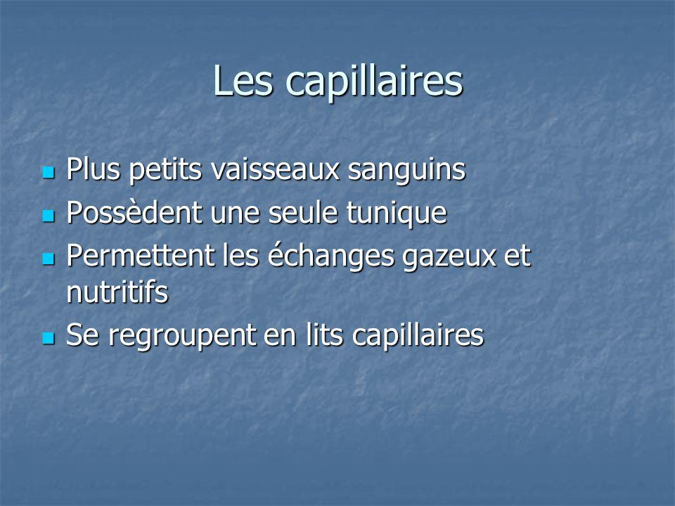 Les lits capillaires