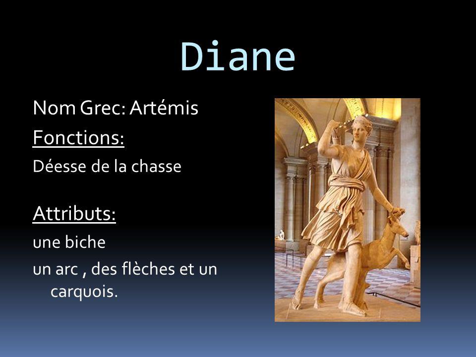 Diane Nom Grec: Artémis Fonctions: Déesse de la chasse Attributs: une biche un arc, des flèches et un carquois.