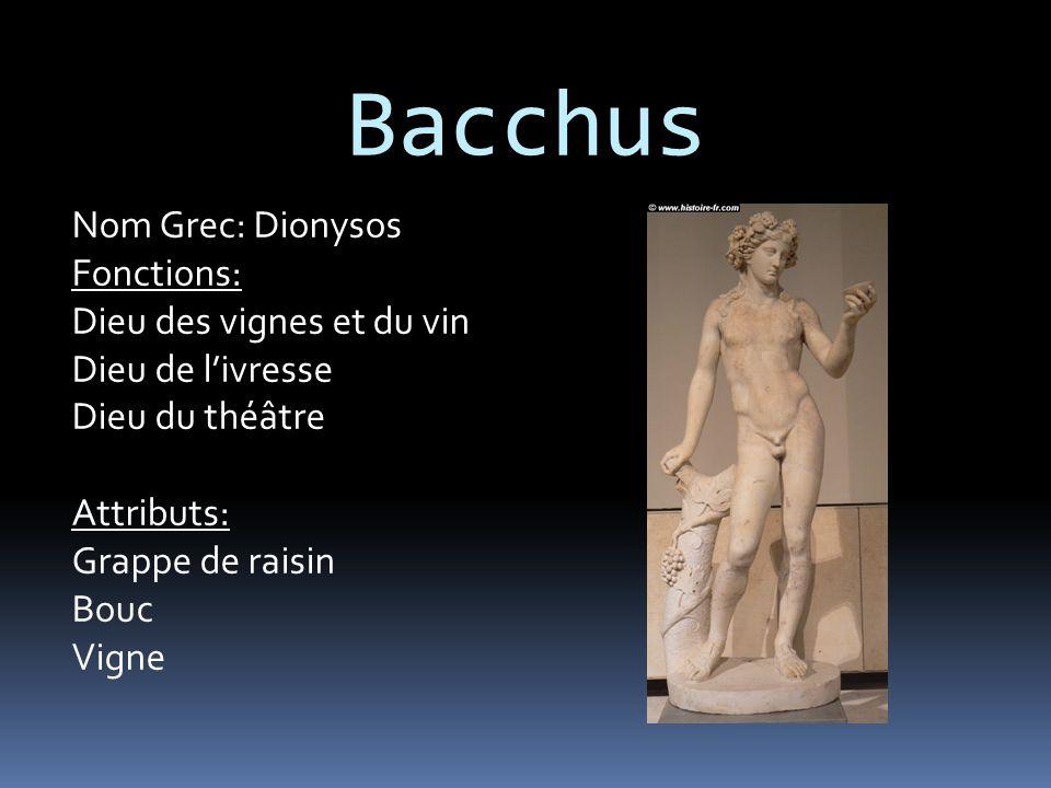 Bacchus Nom Grec: Dionysos Fonctions: Dieu des vignes et du vin Dieu de l'ivresse Dieu du théâtre Attributs: Grappe de raisin Bouc Vigne