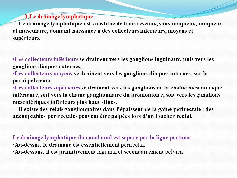 3-Le drainage lymphatique Le drainage lymphatique est constitué de trois réseaux, sous-muqueux, muqueux et musculaire, donnant naissance à des collecteurs inférieurs, moyens et supérieurs.