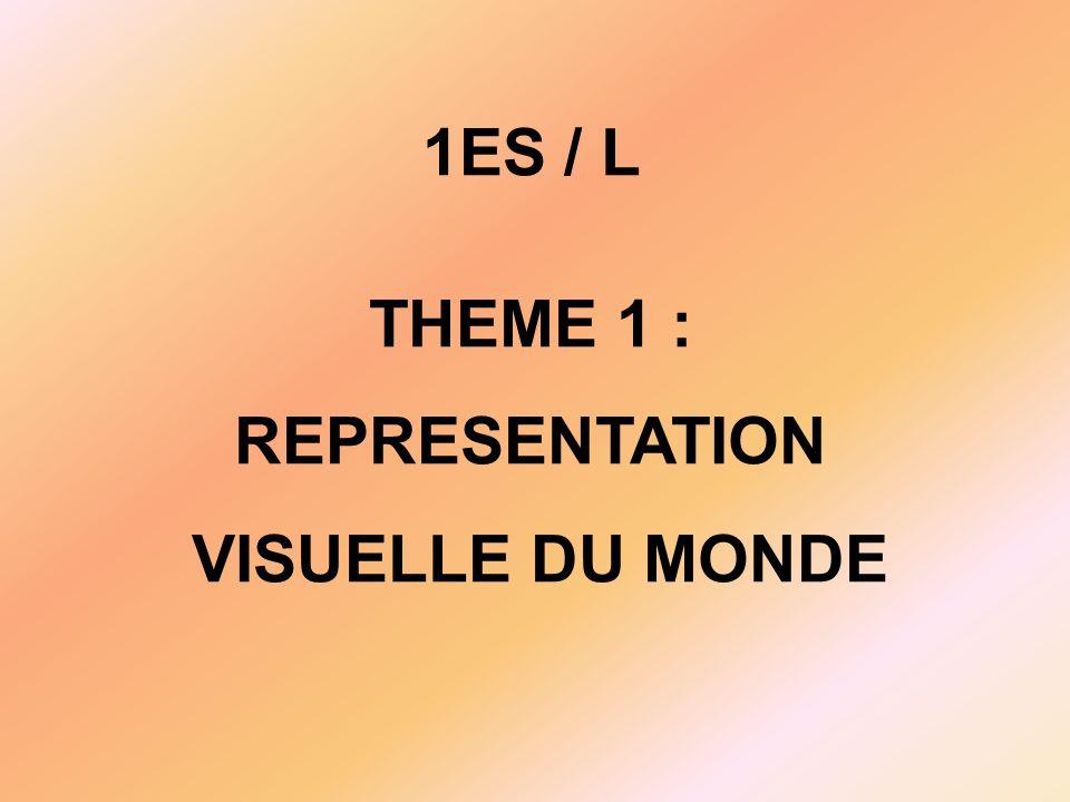 1ES / L THEME 1 : REPRESENTATION VISUELLE DU MONDE