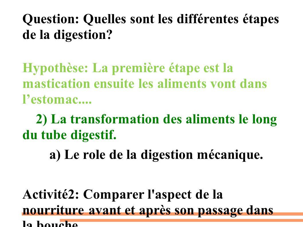 Question: Quelles sont les différentes étapes de la digestion? Hypothèse: La première étape est la mastication ensuite les aliments vont dans l'estoma