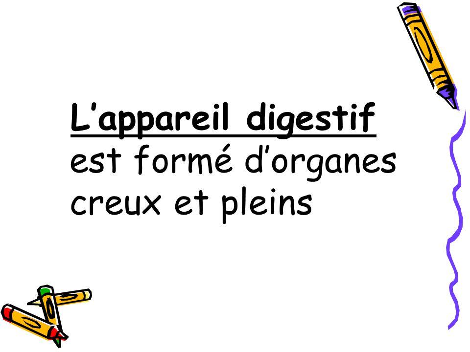 FAUX Cardia = orifice > Pylore = orifice <