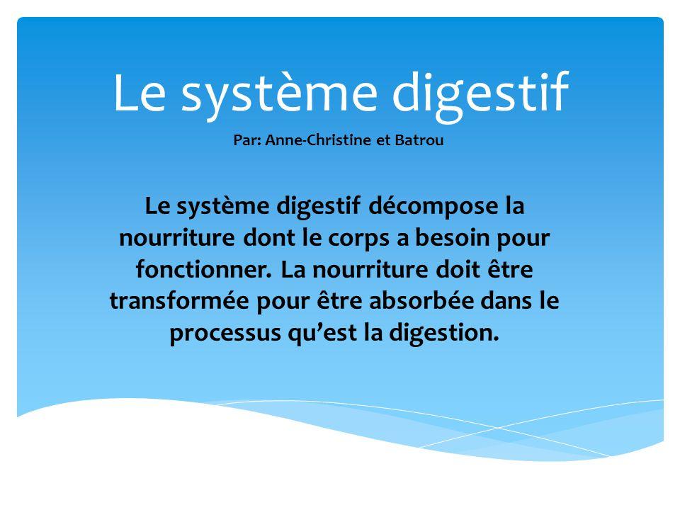 Le système digestif Le système digestif décompose la nourriture dont le corps a besoin pour fonctionner. La nourriture doit être transformée pour être