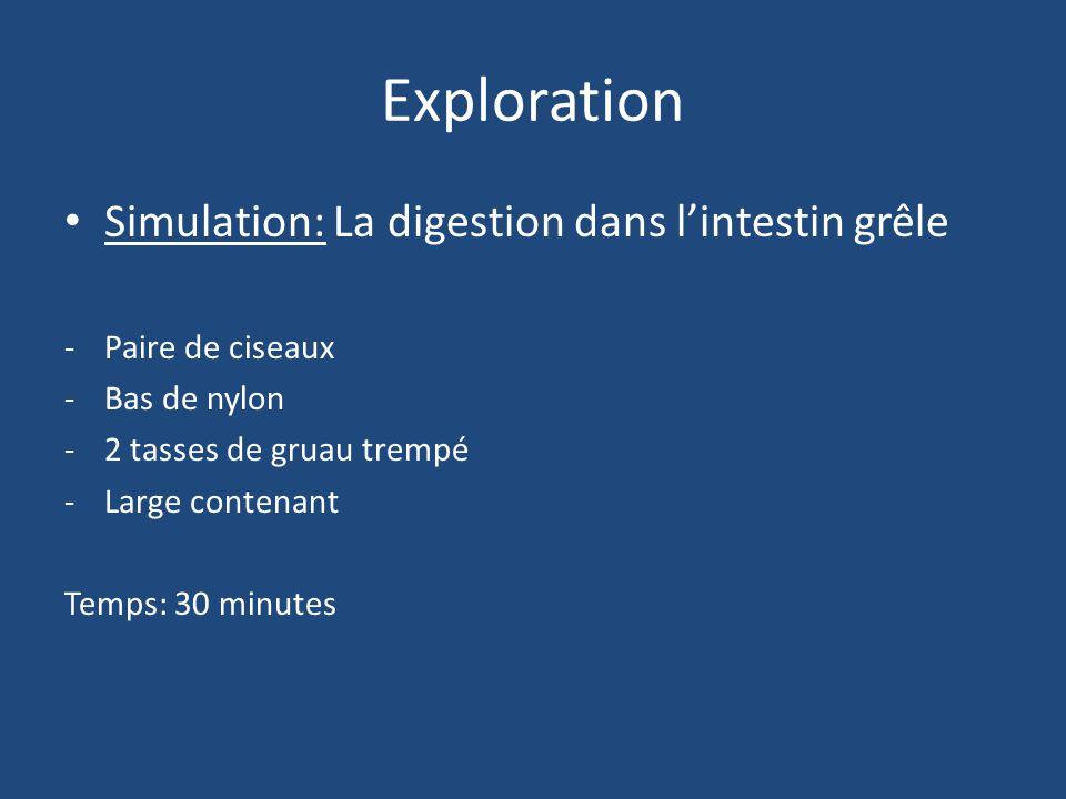 Exploration Simulation: La digestion dans l'intestin grêle -Paire de ciseaux -Bas de nylon -2 tasses de gruau trempé -Large contenant Temps: 30 minutes