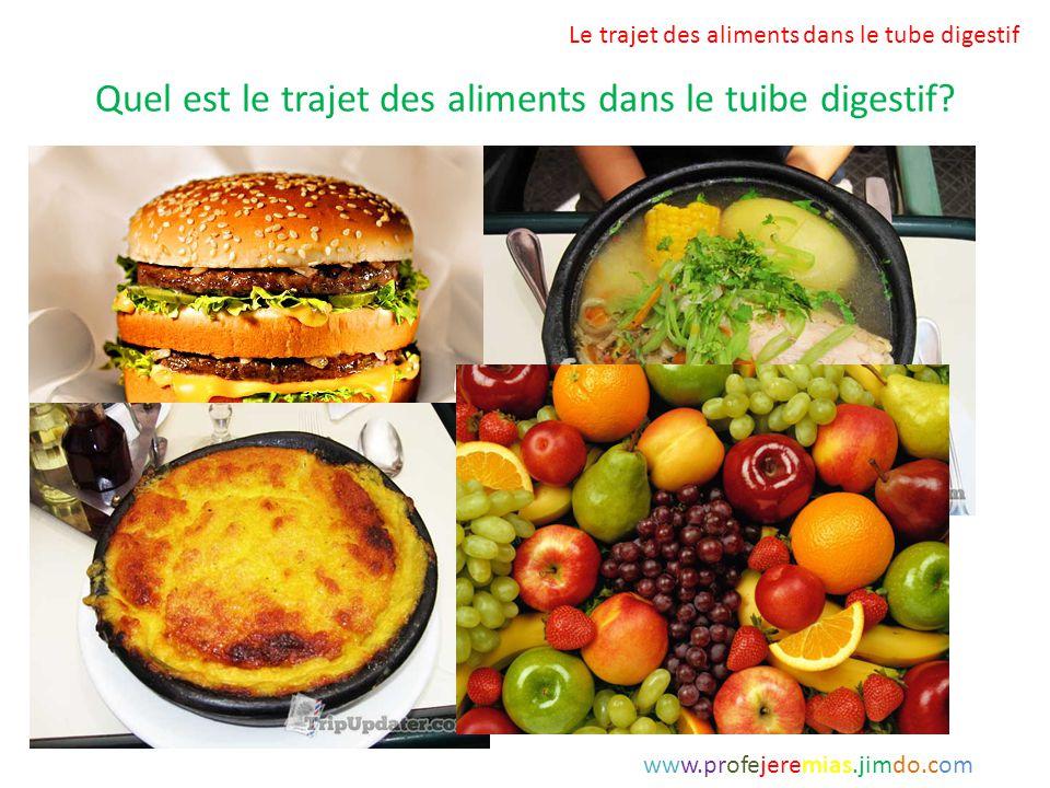 Quel est le trajet des aliments dans le tuibe digestif? Le trajet des aliments dans le tube digestif www.profejeremias.jimdo.com