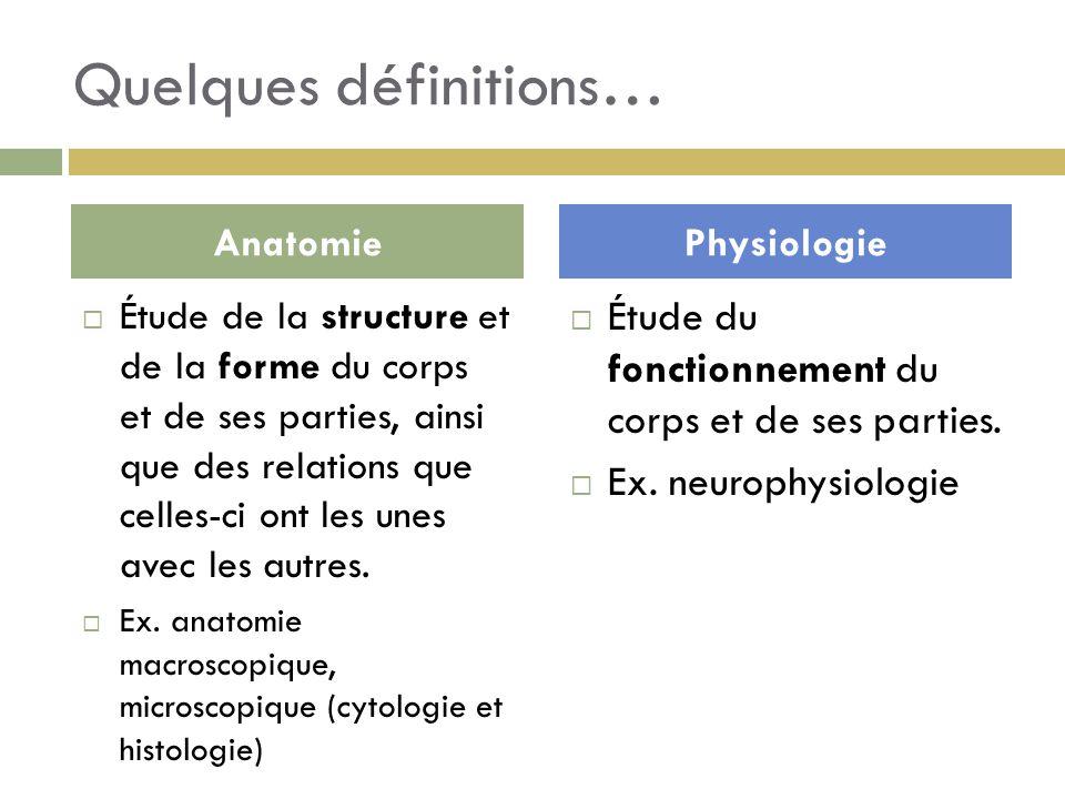 Quelques définitions…  Étude de la structure et de la forme du corps et de ses parties, ainsi que des relations que celles-ci ont les unes avec les a