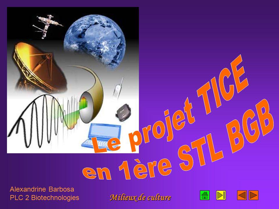 Milieux de culture Alexandrine Barbosa PLC 2 Biotechnologies