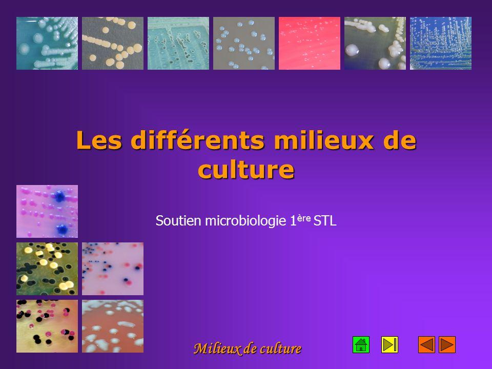 Milieux de culture Les différents milieux de culture Soutien microbiologie 1 ère STL