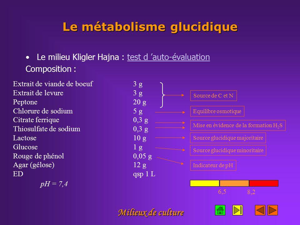 Milieux de culture Le métabolisme glucidique Le milieu Kligler Hajna : test d 'auto-évaluationtest d 'auto-évaluation Composition : Extrait de viande de boeuf3 g Extrait de levure 3 g Peptone20 g Chlorure de sodium5 g Citrate ferrique0,3 g Thiosulfate de sodium0,3 g Lactose 10 g Glucose 1 g Rouge de phénol0,05 g Agar (gélose)12 g EDqsp 1 L Equilibre osmotiqueMise en évidence de la formation H 2 S Indicateur de pH 6,5 8,2 pH = 7,4 Source glucidique majoritaireSource glucidique minoritaireSource de C et N