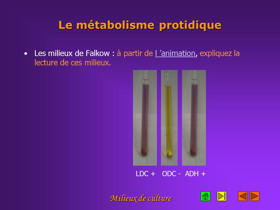 Milieux de culture Le métabolisme protidique Les milieux de Falkow : à partir de l 'animation, expliquez la lecture de ces milieux.l 'animation LDC + ODC - ADH +