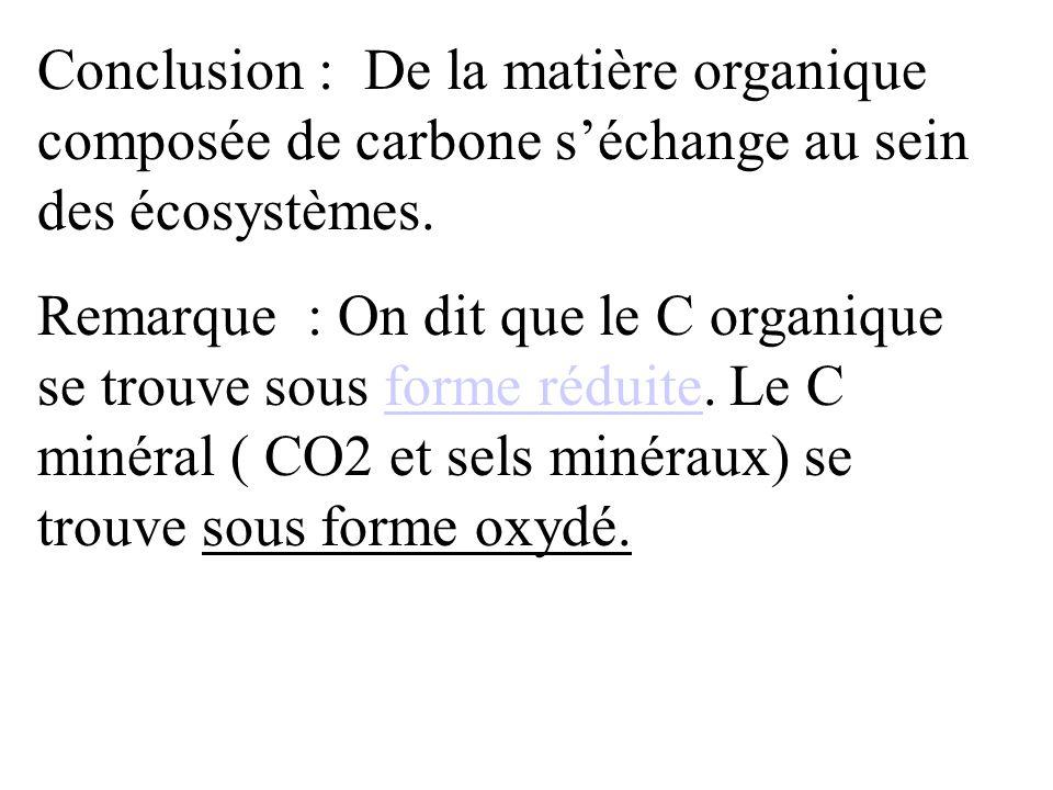 Conclusion : De la matière organique composée de carbone s'échange au sein des écosystèmes.