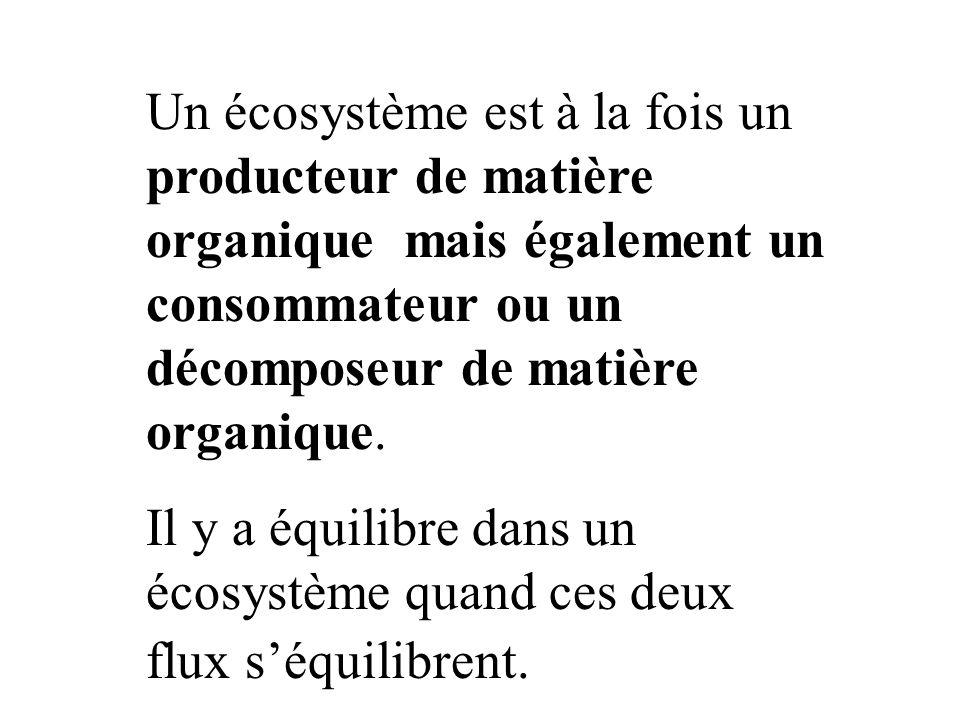 Un écosystème est à la fois un producteur de matière organique mais également un consommateur ou un décomposeur de matière organique.
