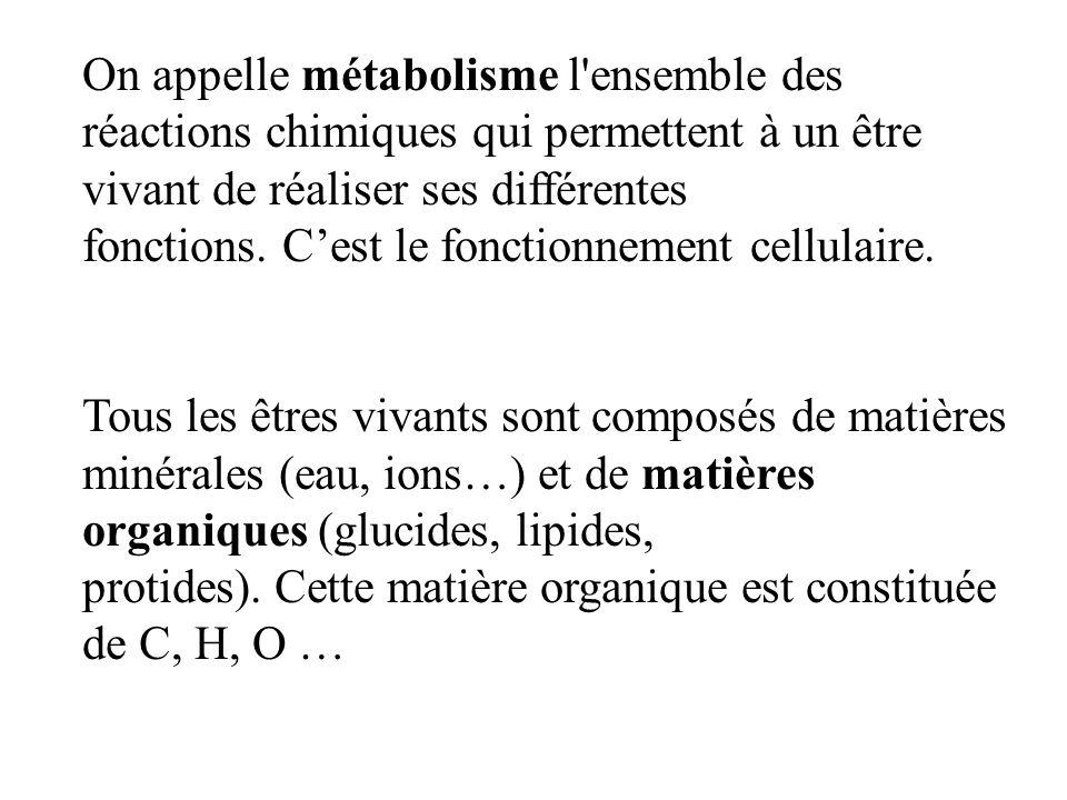 On appelle métabolisme l ensemble des réactions chimiques qui permettent à un être vivant de réaliser ses différentes fonctions.