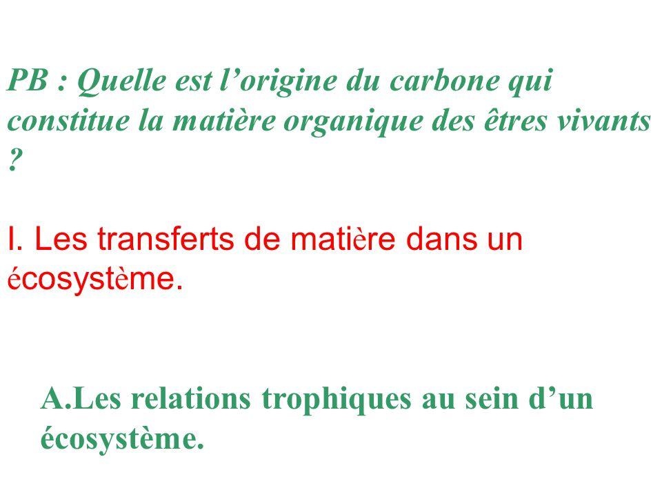 PB : Quelle est l'origine du carbone qui constitue la matière organique des êtres vivants .