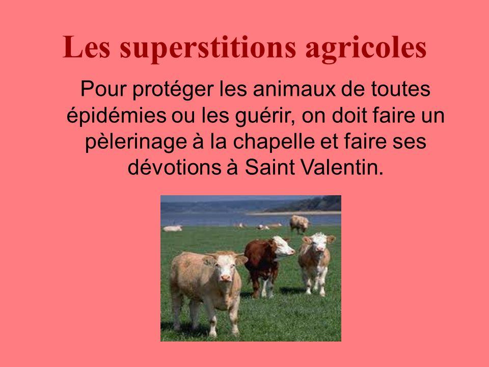 Les superstitions agricoles Pour protéger les animaux de toutes épidémies ou les guérir, on doit faire un pèlerinage à la chapelle et faire ses dévotions à Saint Valentin.
