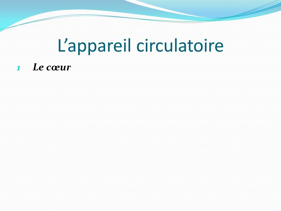 L'appareil circulatoire 1 Le cœur