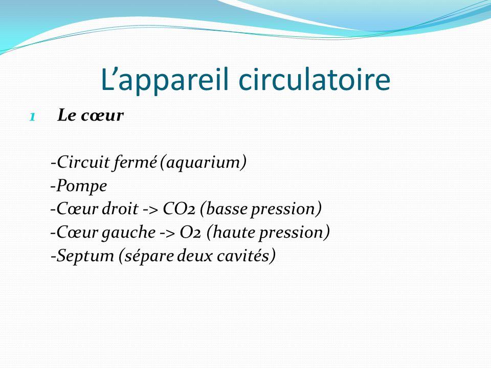 L'appareil circulatoire 1 Le cœur -Circuit fermé (aquarium) -Pompe -Cœur droit -> CO2 (basse pression) -Cœur gauche -> O2 (haute pression) -Septum (sépare deux cavités)