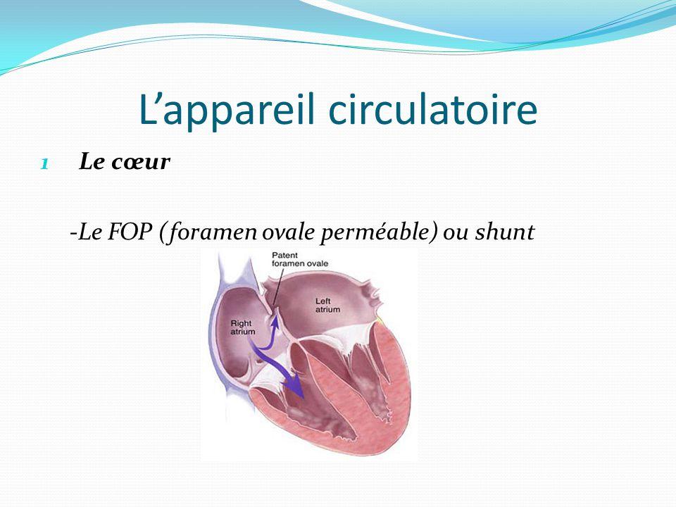 L'appareil circulatoire 1 Le cœur -Le FOP (foramen ovale perméable) ou shunt