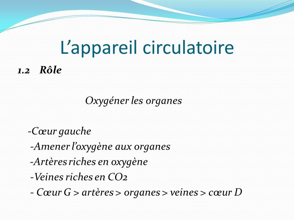 L'appareil circulatoire 1.2 Rôle Oxygéner les organes -Cœur gauche -Amener l'oxygène aux organes -Artères riches en oxygène -Veines riches en CO2 - Cœur G > artères > organes > veines > cœur D