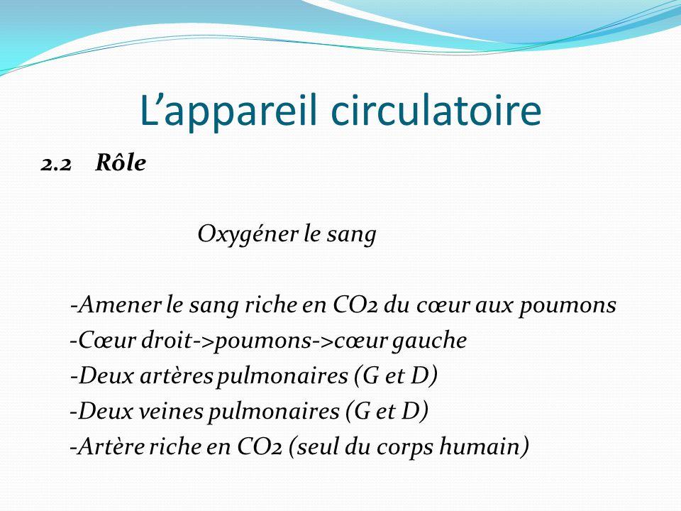 L'appareil circulatoire 2.2 Rôle Oxygéner le sang -Amener le sang riche en CO2 du cœur aux poumons -Cœur droit->poumons->cœur gauche -Deux artères pulmonaires (G et D) -Deux veines pulmonaires (G et D) -Artère riche en CO2 (seul du corps humain)