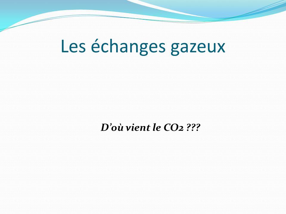 Les échanges gazeux D'où vient le CO2 ???