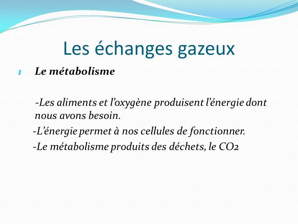 Les échanges gazeux 1 Le métabolisme -Les aliments et l'oxygène produisent l'énergie dont nous avons besoin.