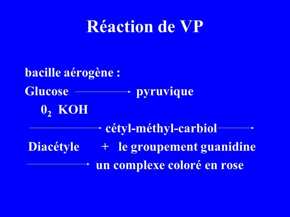 Réaction de VP bacille aérogène : Glucose pyruvique 0 2 KOH cétyl-méthyl-carbiol Diacétyle + le groupement guanidine un complexe coloré en rose