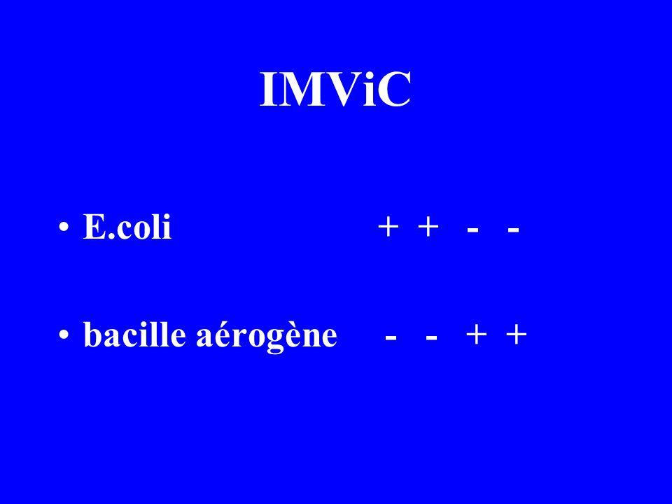 IMViC E.coli + + - - bacille aérogène - - + +
