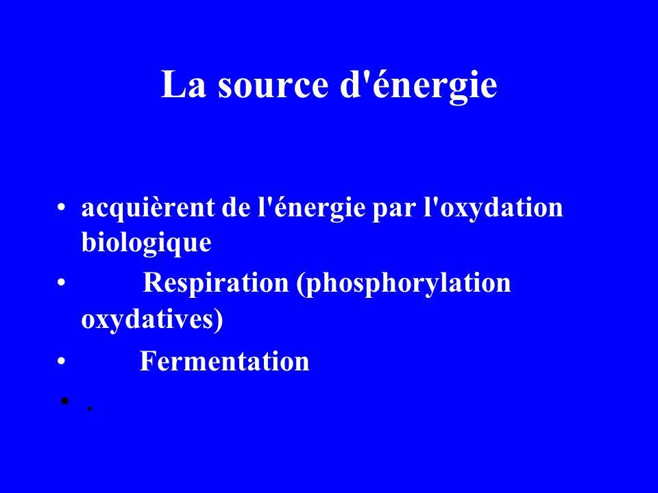 La source d énergie acquièrent de l énergie par l oxydation biologique Respiration (phosphorylation oxydatives) Fermentation.