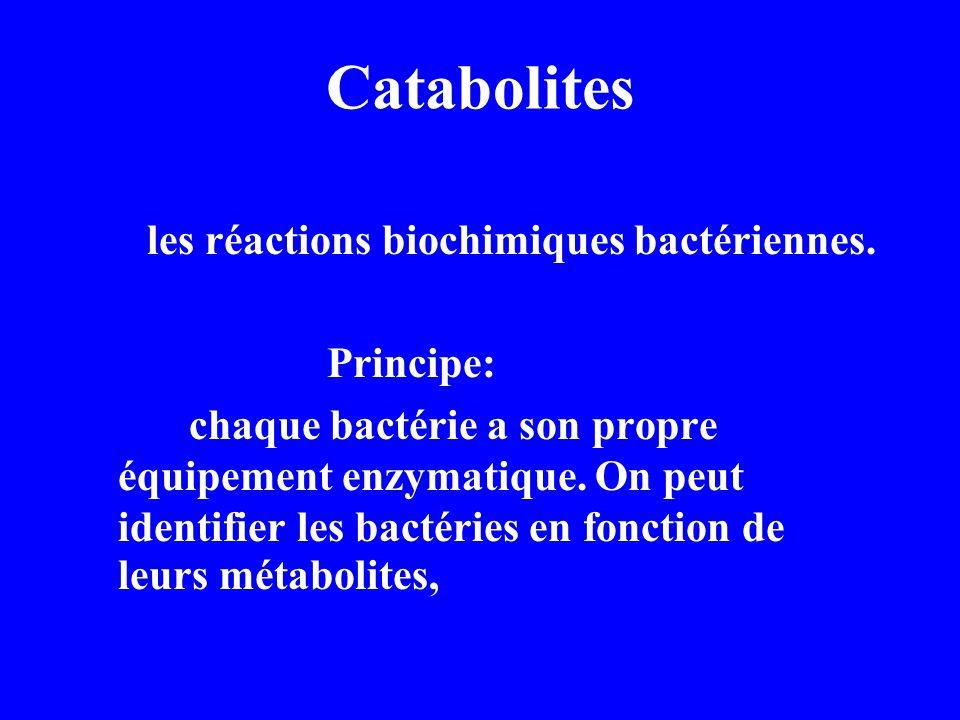 Les méthodes courantes Test de fermentation des sucres Réaction de VP Test du rouge de Méthyle(RM) Epreuve d utilisation du citrate de soude Test d indole Test à l hydrogène sulfure(H 2 S) Test de l uréase