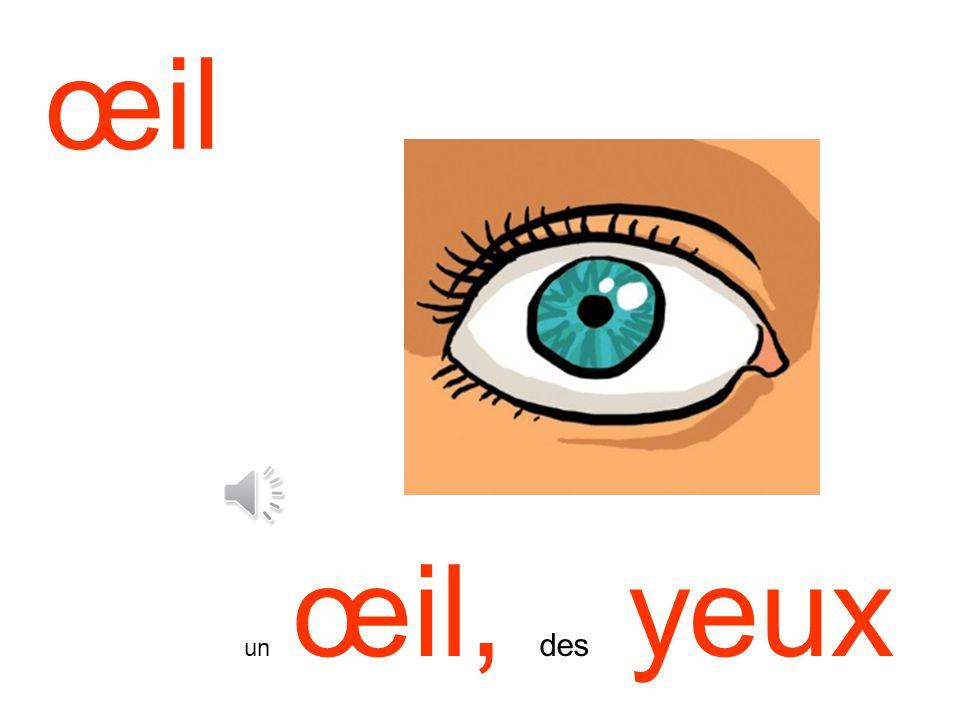 œil un œil, des yeux