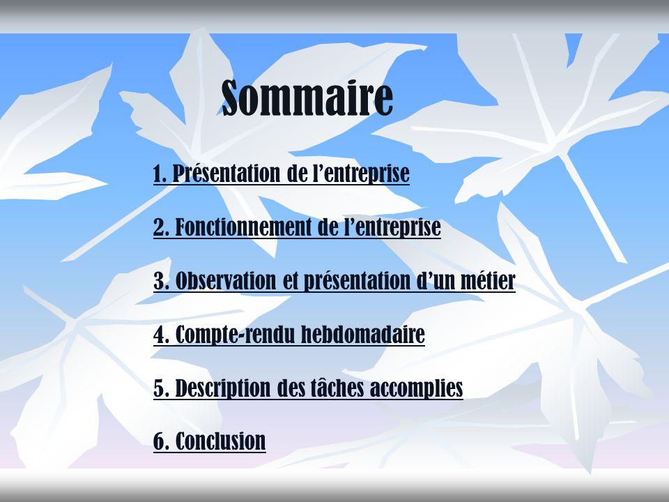 Sommaire 1.Présentation de l'entreprise 2. Fonctionnement de l'entreprise 3.