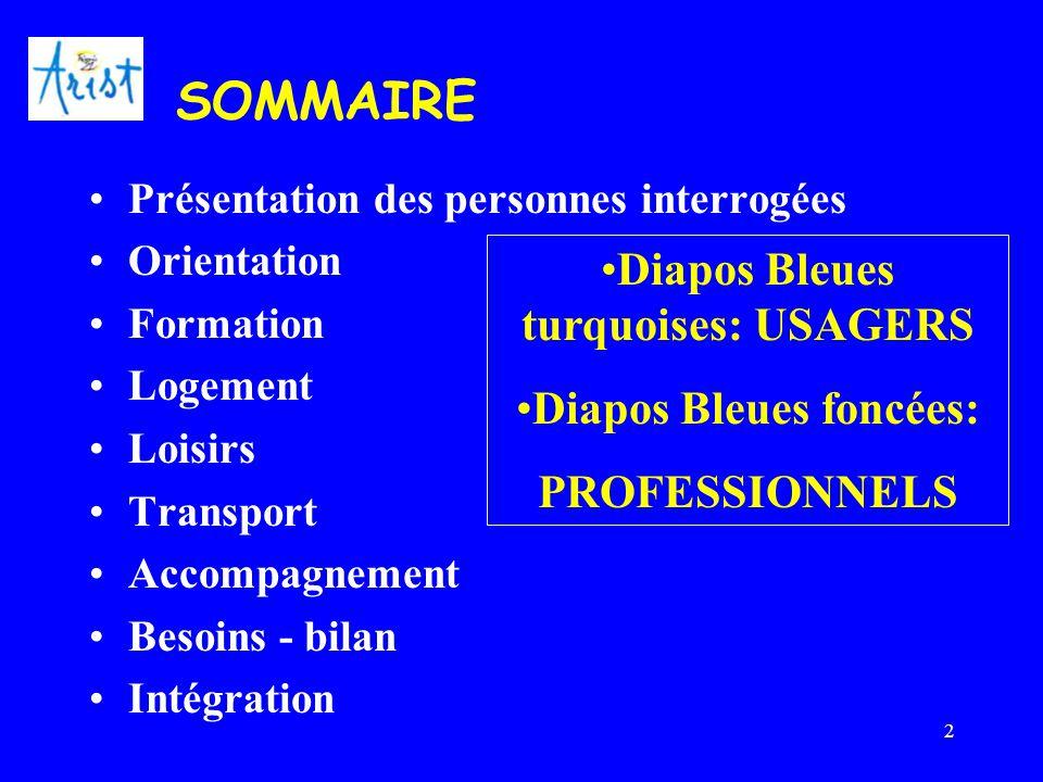 2 SOMMAIRE Présentation des personnes interrogées Orientation Formation Logement Loisirs Transport Accompagnement Besoins - bilan Intégration Diapos B