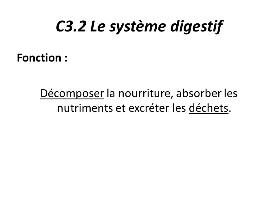C3.2 Le système digestif Fonction : Décomposer la nourriture, absorber les nutriments et excréter les déchets.