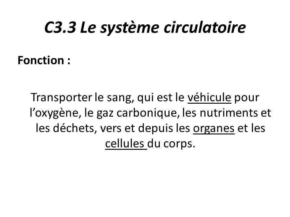 C3.3 Le système circulatoire Fonction : Transporter le sang, qui est le véhicule pour l'oxygène, le gaz carbonique, les nutriments et les déchets, vers et depuis les organes et les cellules du corps.