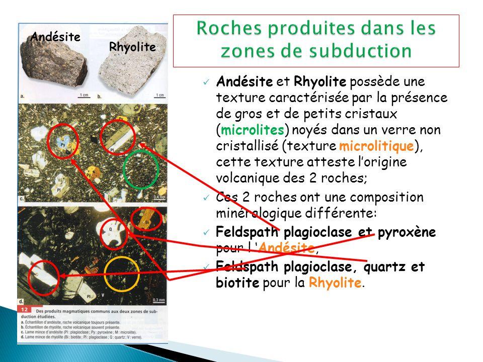 Andésite et Rhyolite possède une texture caractérisée par la présence de gros et de petits cristaux (microlites) noyés dans un verre non cristallisé (texture microlitique), cette texture atteste l'origine volcanique des 2 roches; Ces 2 roches ont une composition minéralogique différente: Feldspath plagioclase et pyroxène pour l 'Andésite, Feldspath plagioclase, quartz et biotite pour la Rhyolite.