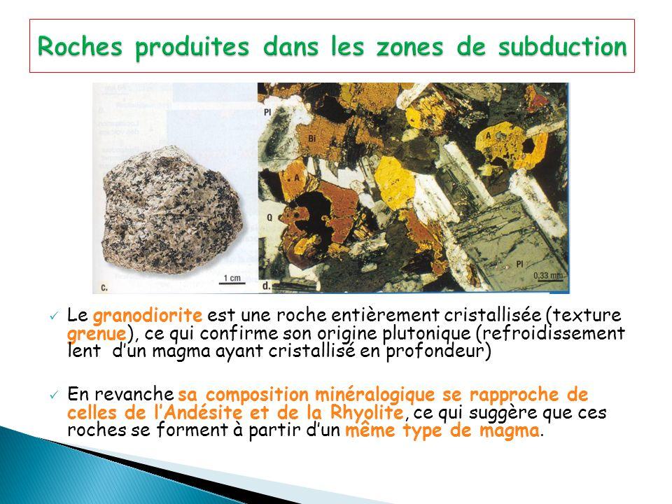 Le granodiorite est une roche entièrement cristallisée (texture grenue), ce qui confirme son origine plutonique (refroidissement lent d'un magma ayant cristallisé en profondeur) En revanche sa composition minéralogique se rapproche de celles de l'Andésite et de la Rhyolite, ce qui suggère que ces roches se forment à partir d'un même type de magma.